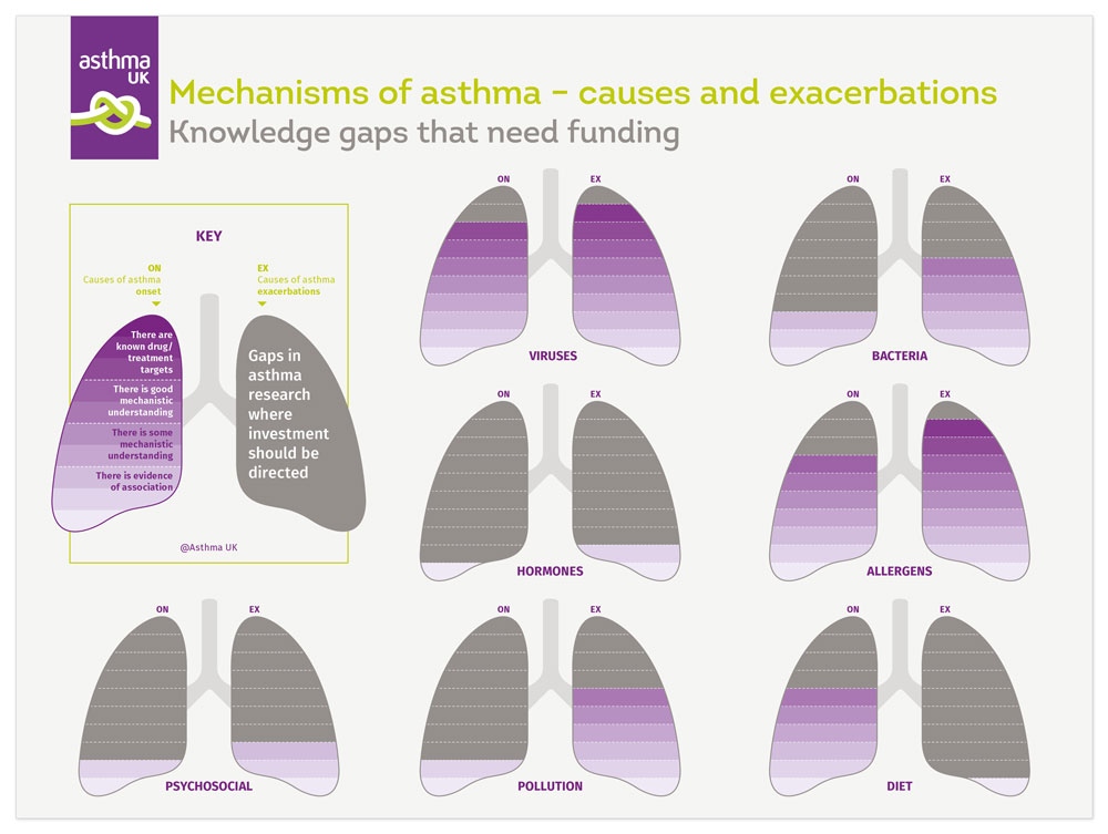 Infographic designer - infographic design for Asthma UK